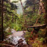 Appalachian Trail deutsch