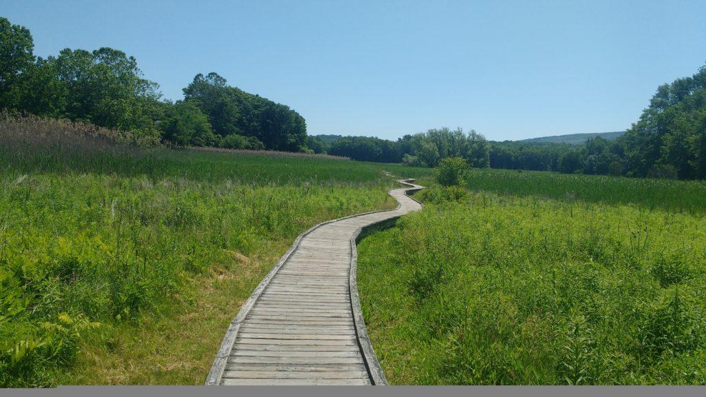 Weitwandern - Appalachian Trail